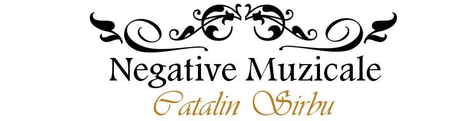 Negative Muzicale
